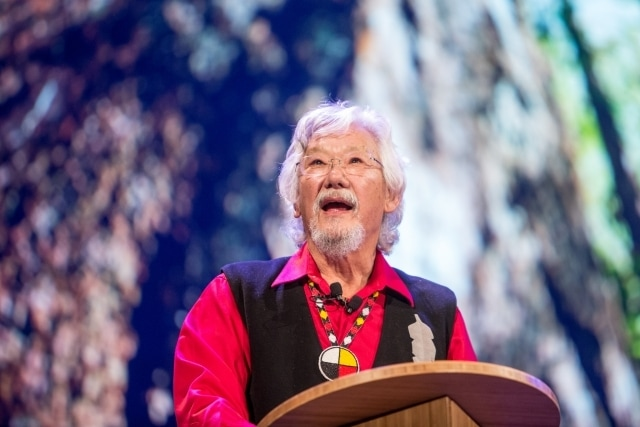 David-Suzuki-by-Kris-Krug.jpg
