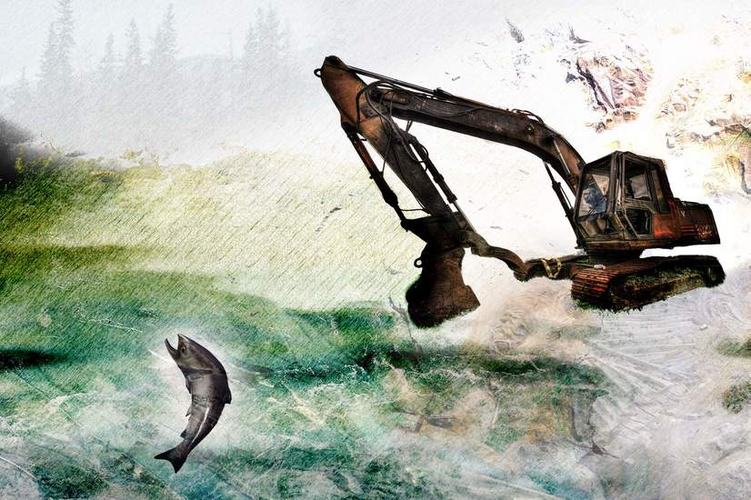 Howe-Sound-Salmon-Burnco-Aggregates-Gravel-Mine-DeSmog-Canada.jpg