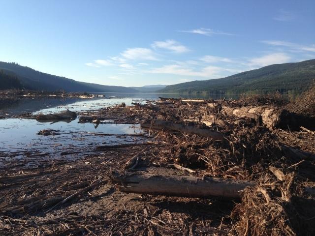 Mount-Polley-Mine-Hazeltine-Creek-Spill-Site.jpg