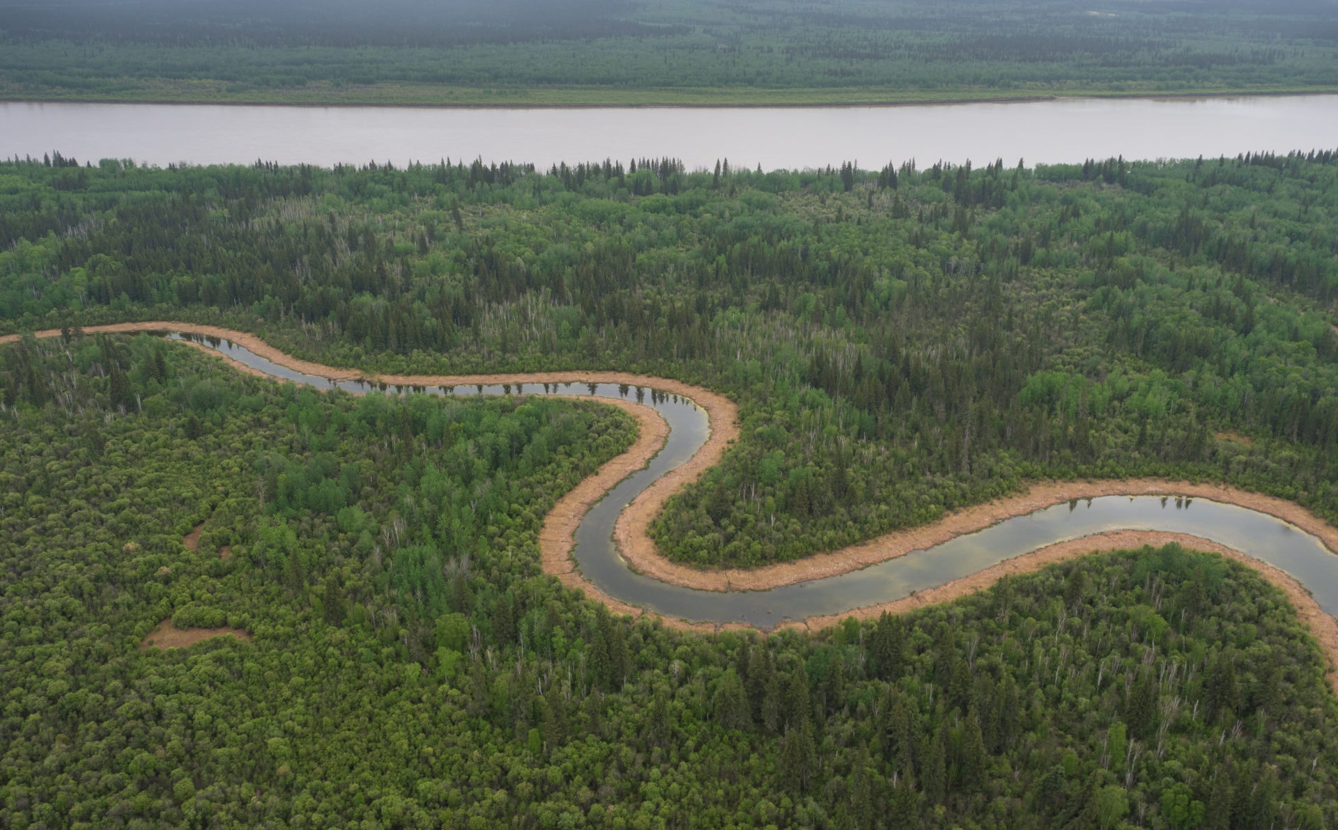 A river snakes through Wood Buffalo National Park.