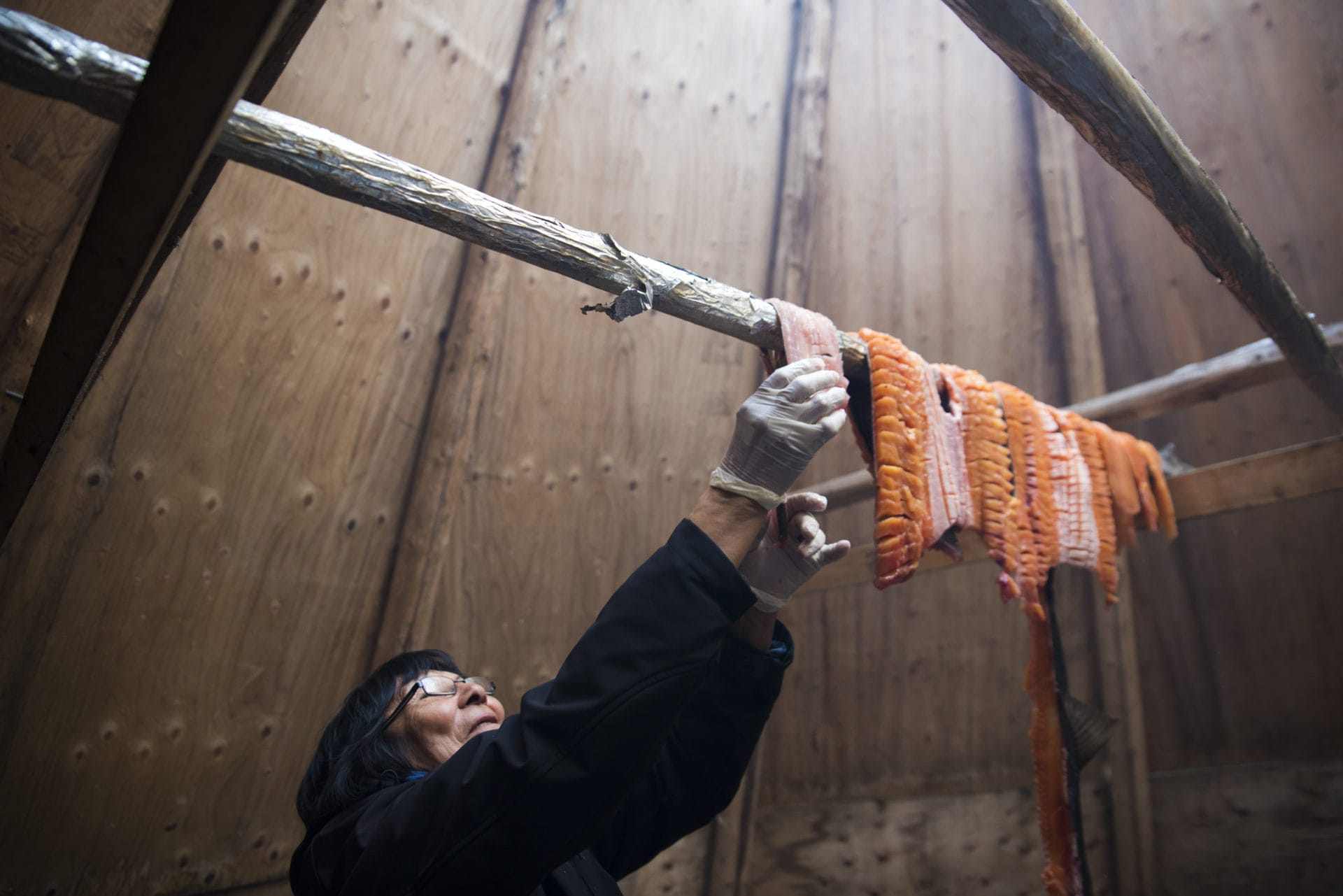 Dora Blondin hangs trout from Great Bear Lake in a tipi