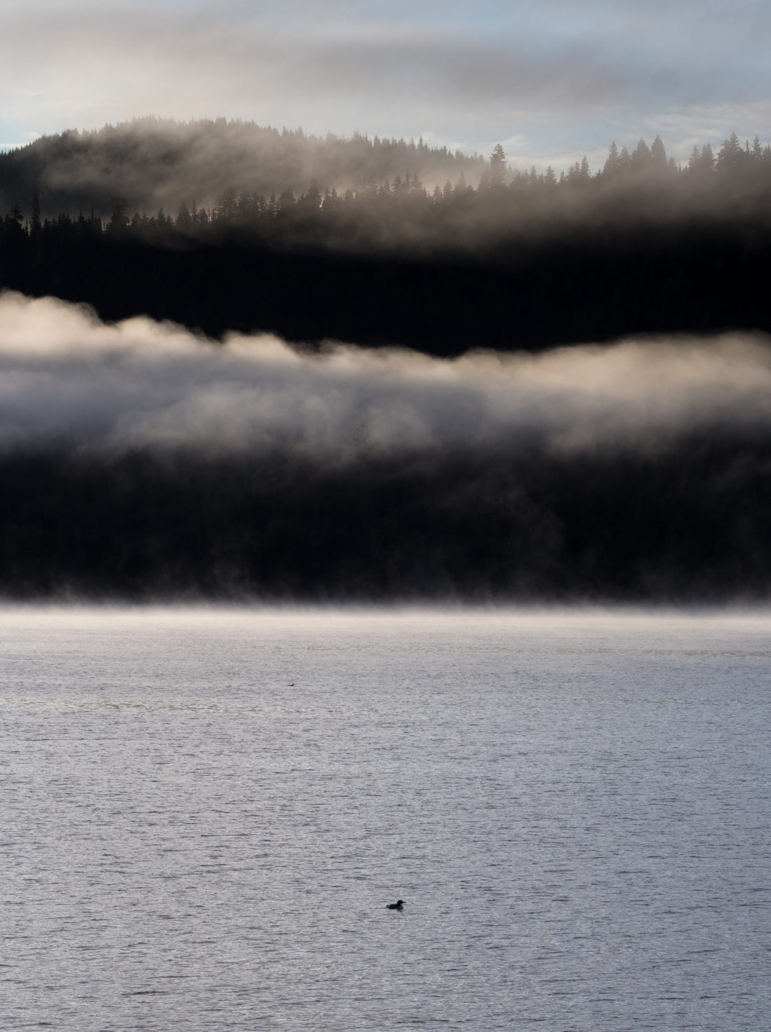 Quesnel Lake Mount Polley