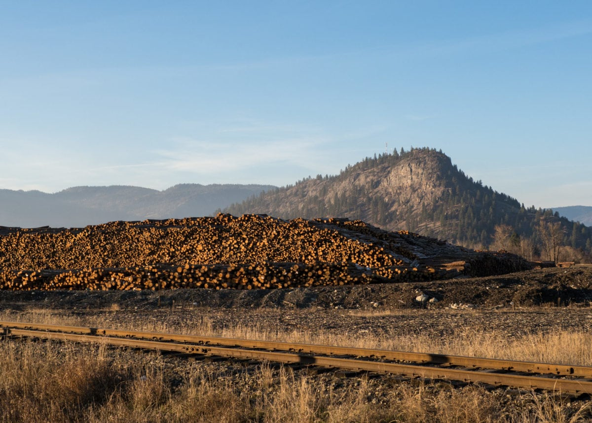 Interfor log yard