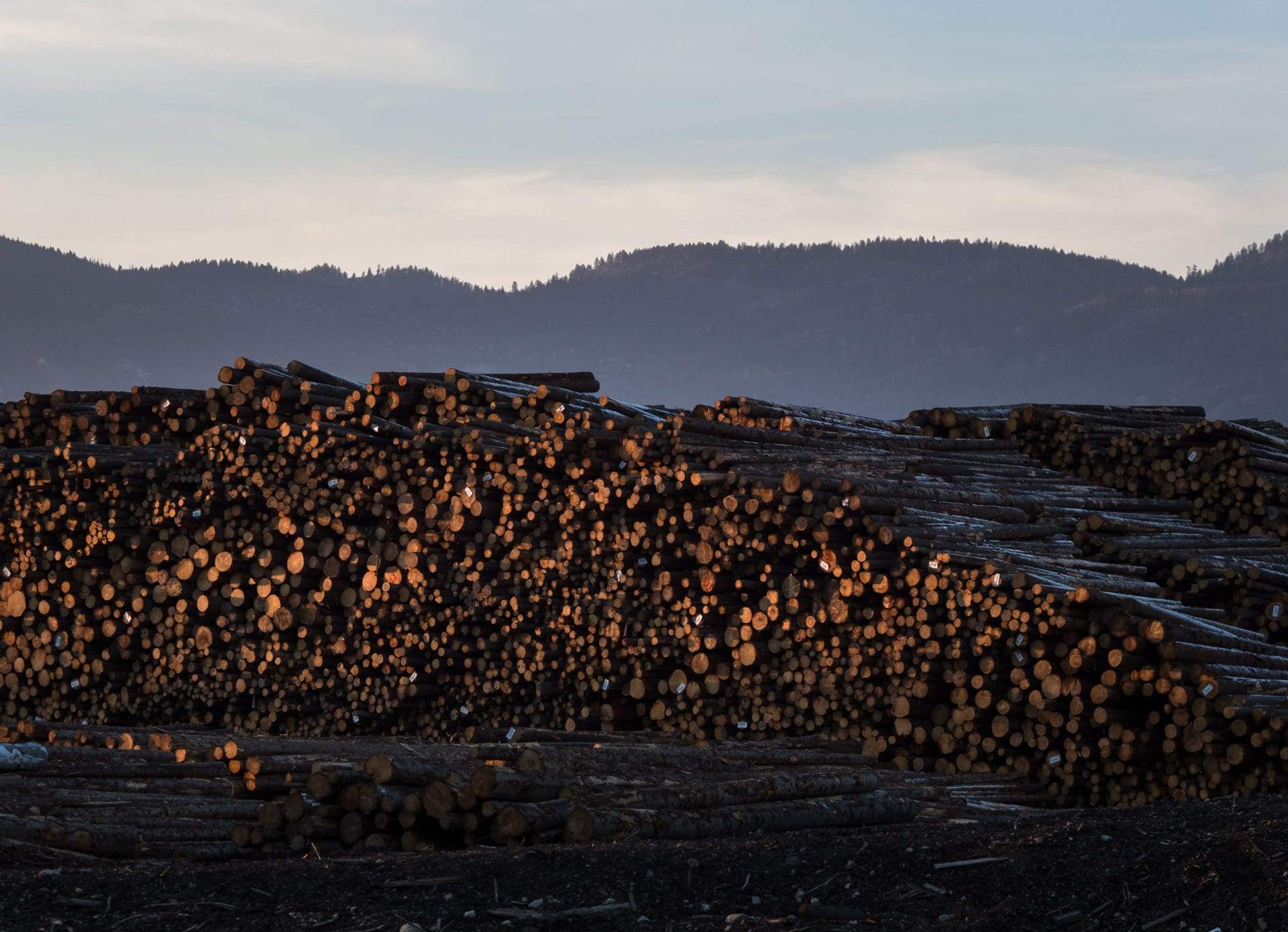 Interfor's lumberyard