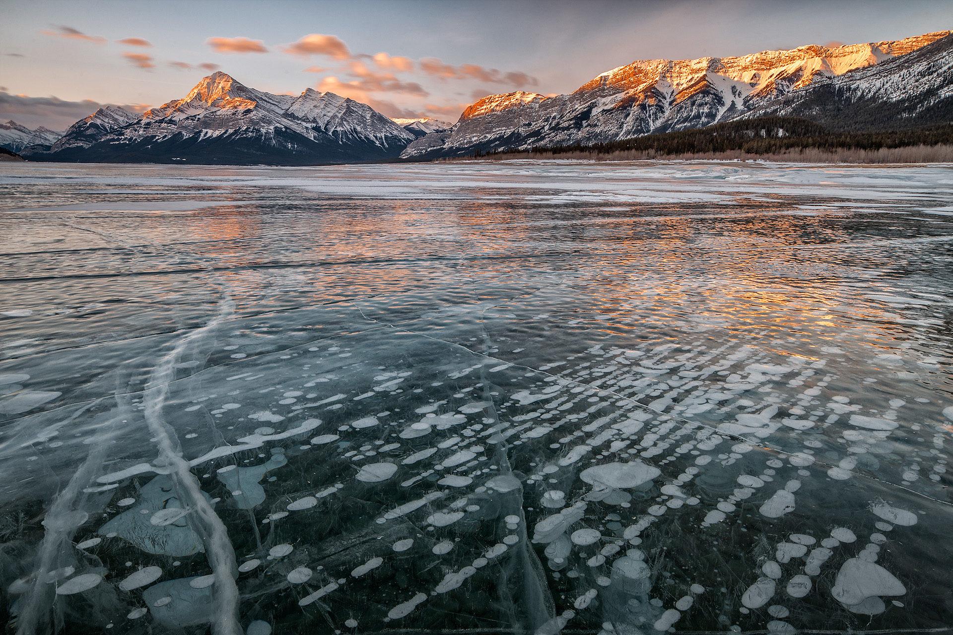 Abraham Lake Mount Stelfox Bighorn Country