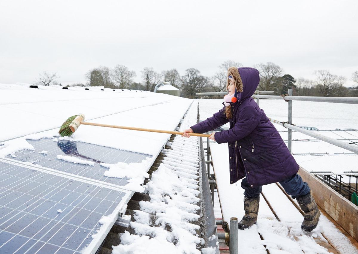 Child sweeps solar panel