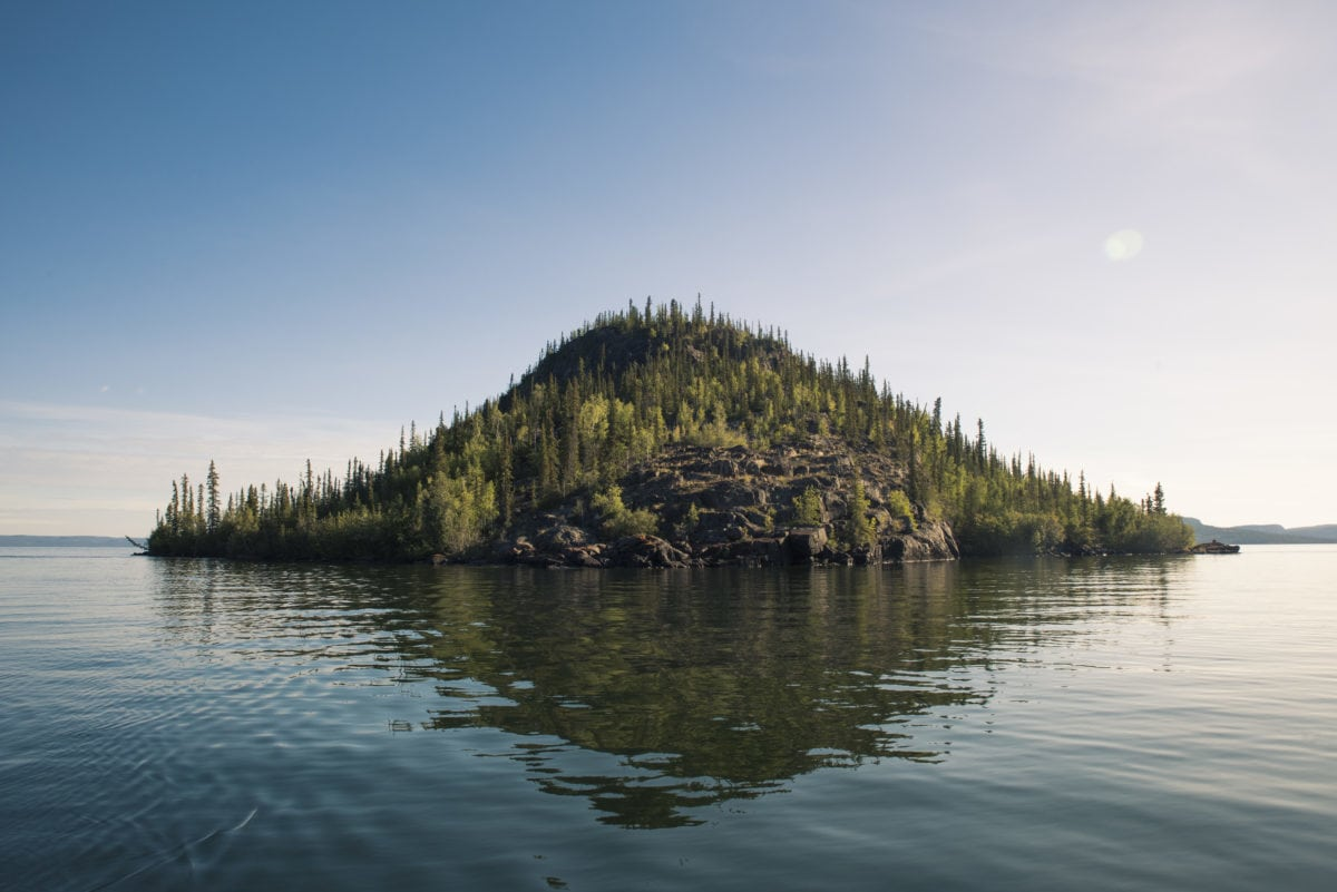 Why Canada's boreal forest is gaining international attention