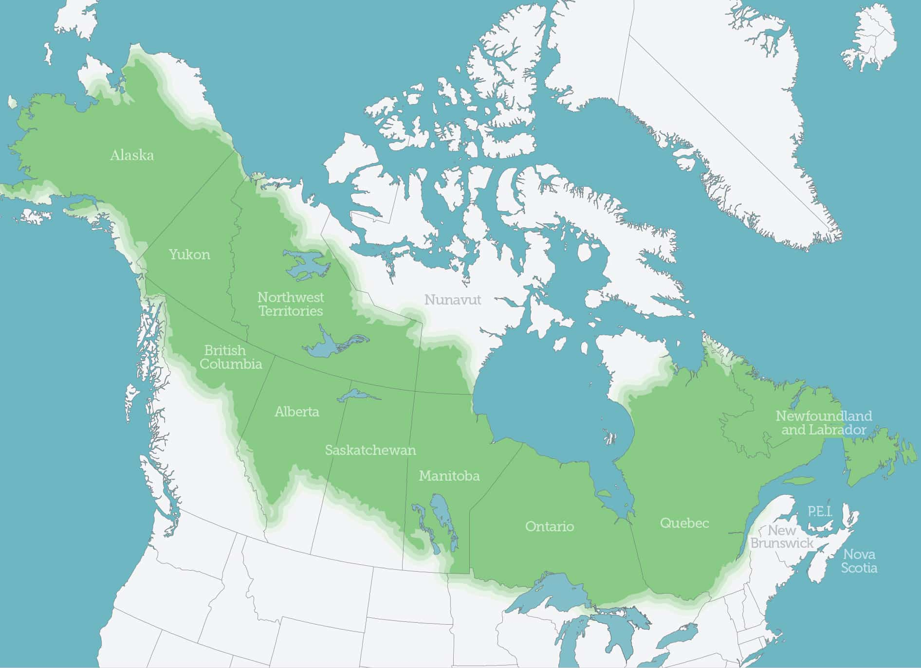 a map of boreal forest coverage across Alaska and Canada
