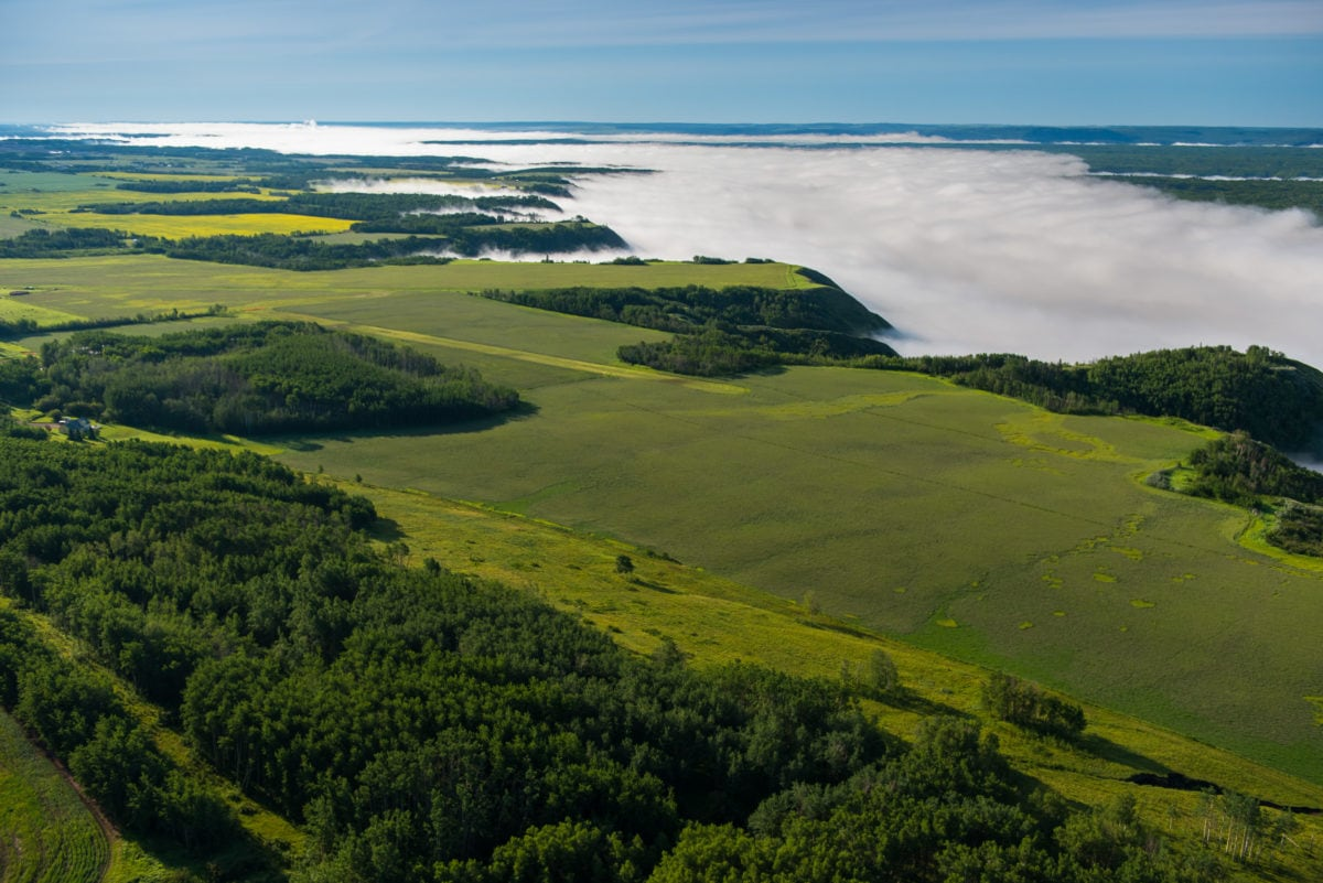 Petrowest numbered company awarded $10 million Site C dam contract on eve of bankruptcy
