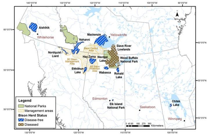 Canada bison herd range map
