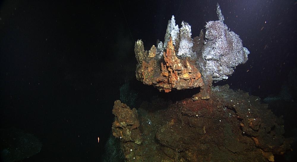 Chimney hydrothermal vent