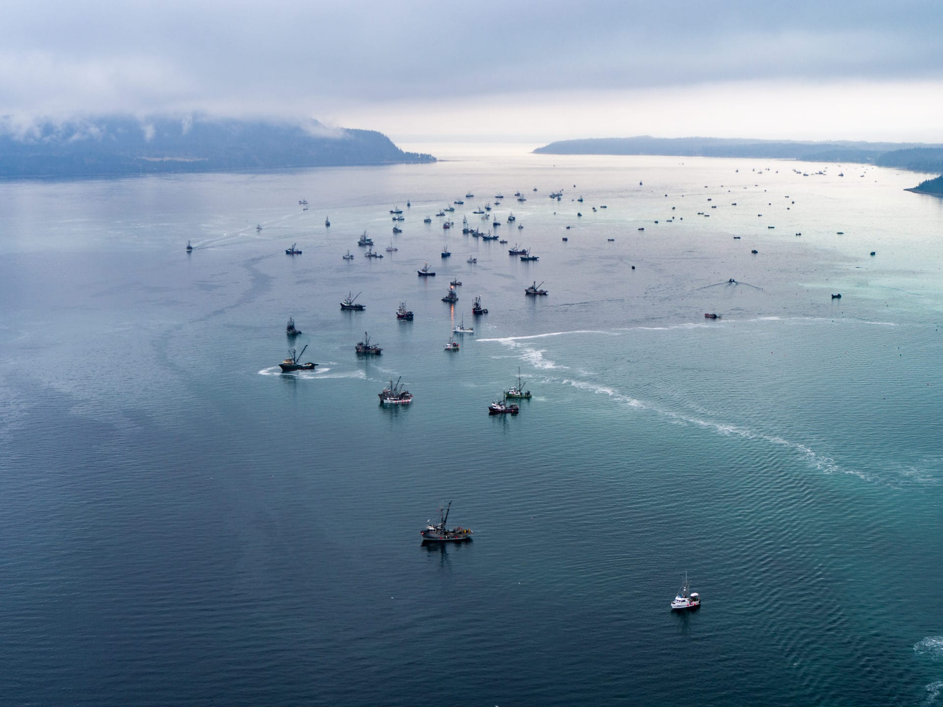 Herring fishing boats March 2019