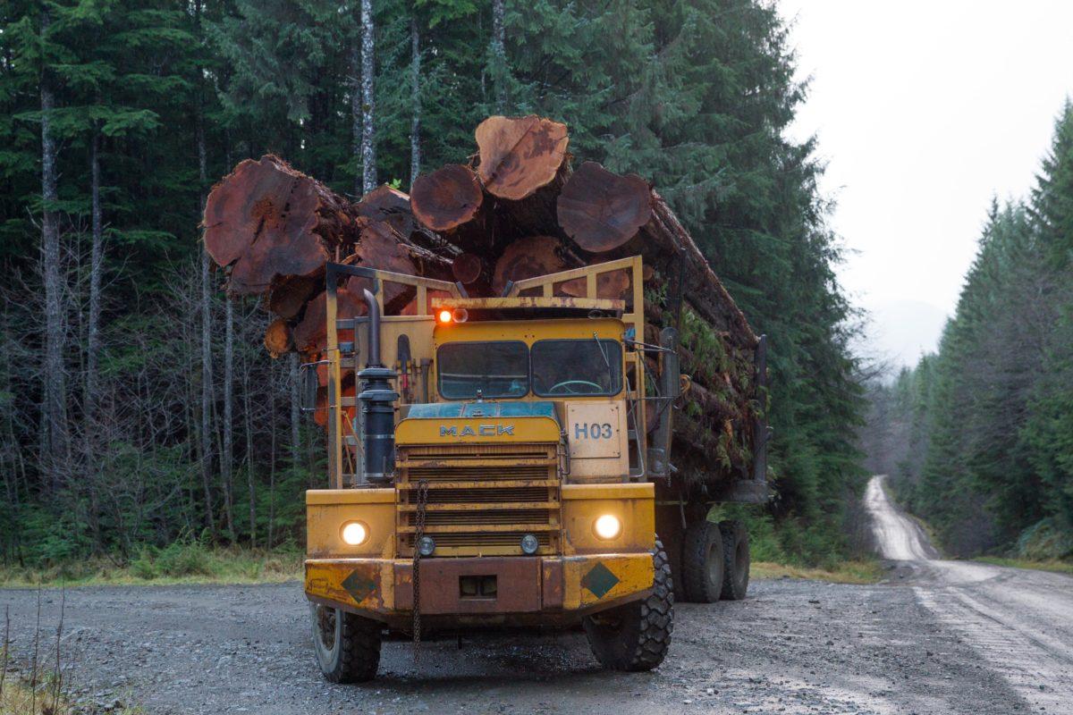 Logging truck Ucluelet