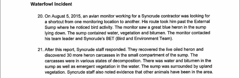 Syncrude heron deaths