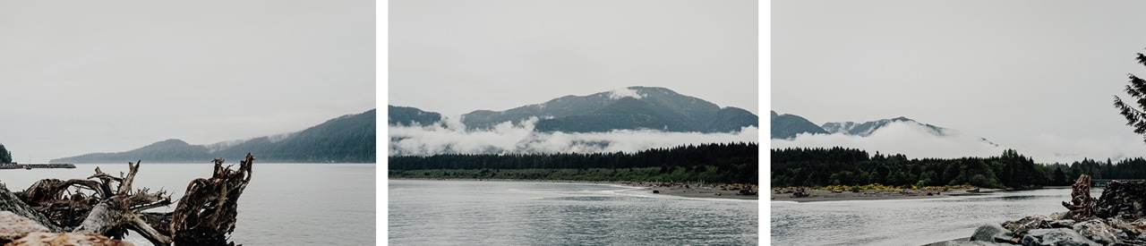 The 'dragon' of Port Renfrew.