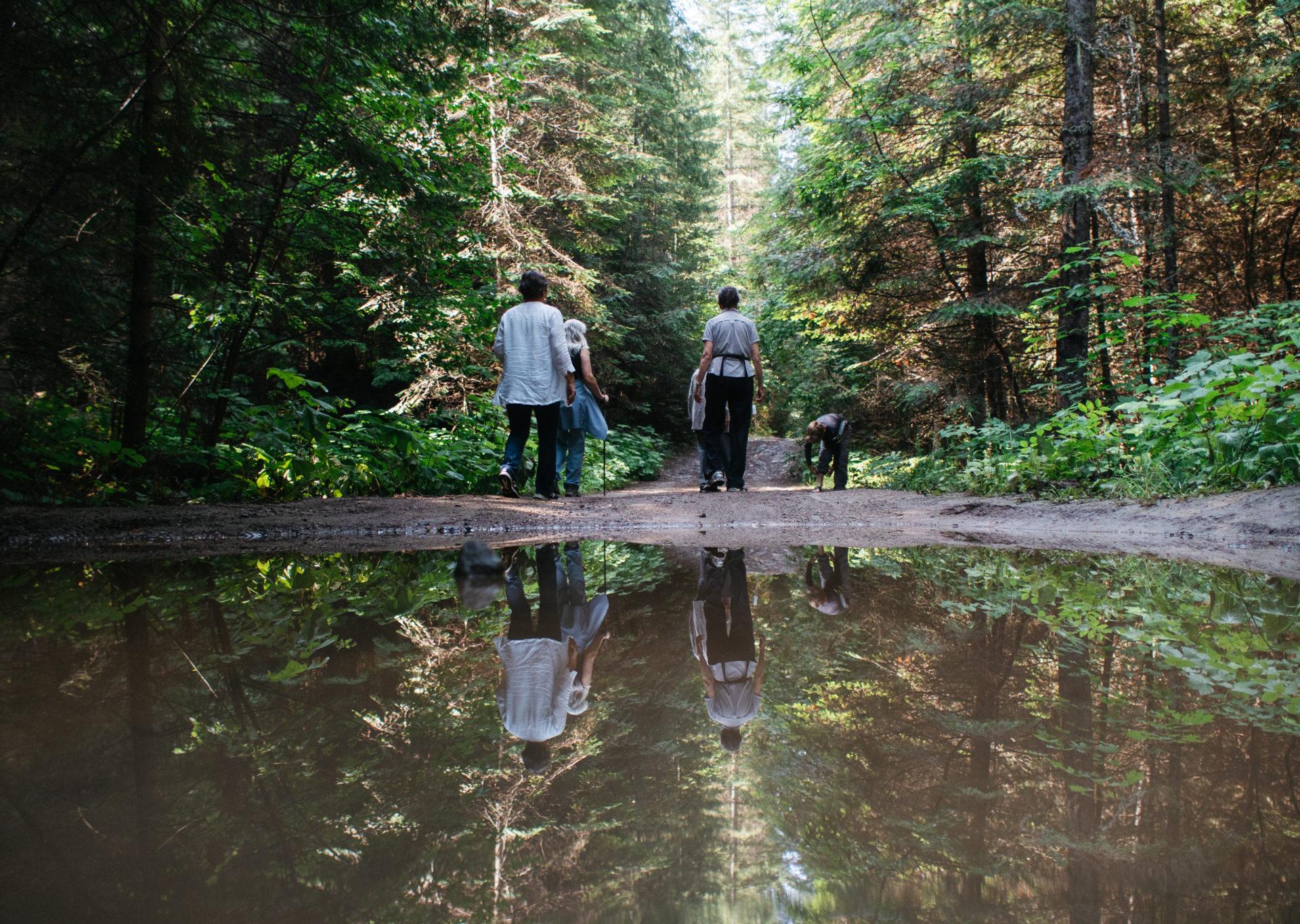 Glade Watershed Kootenay logging Louis Bockner