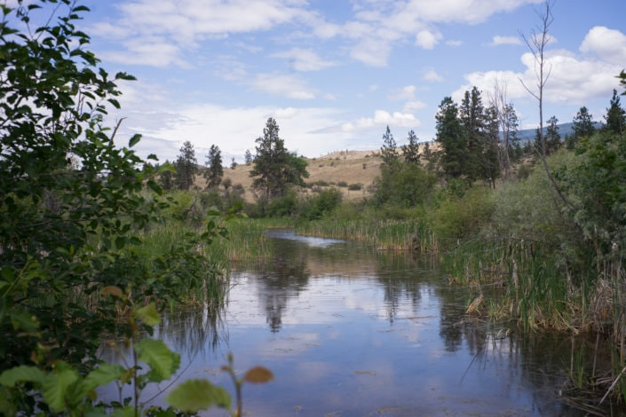 Vasseaux Lake South Okanagan-Similkameen National Park Reserve Photo: Jake Sherman