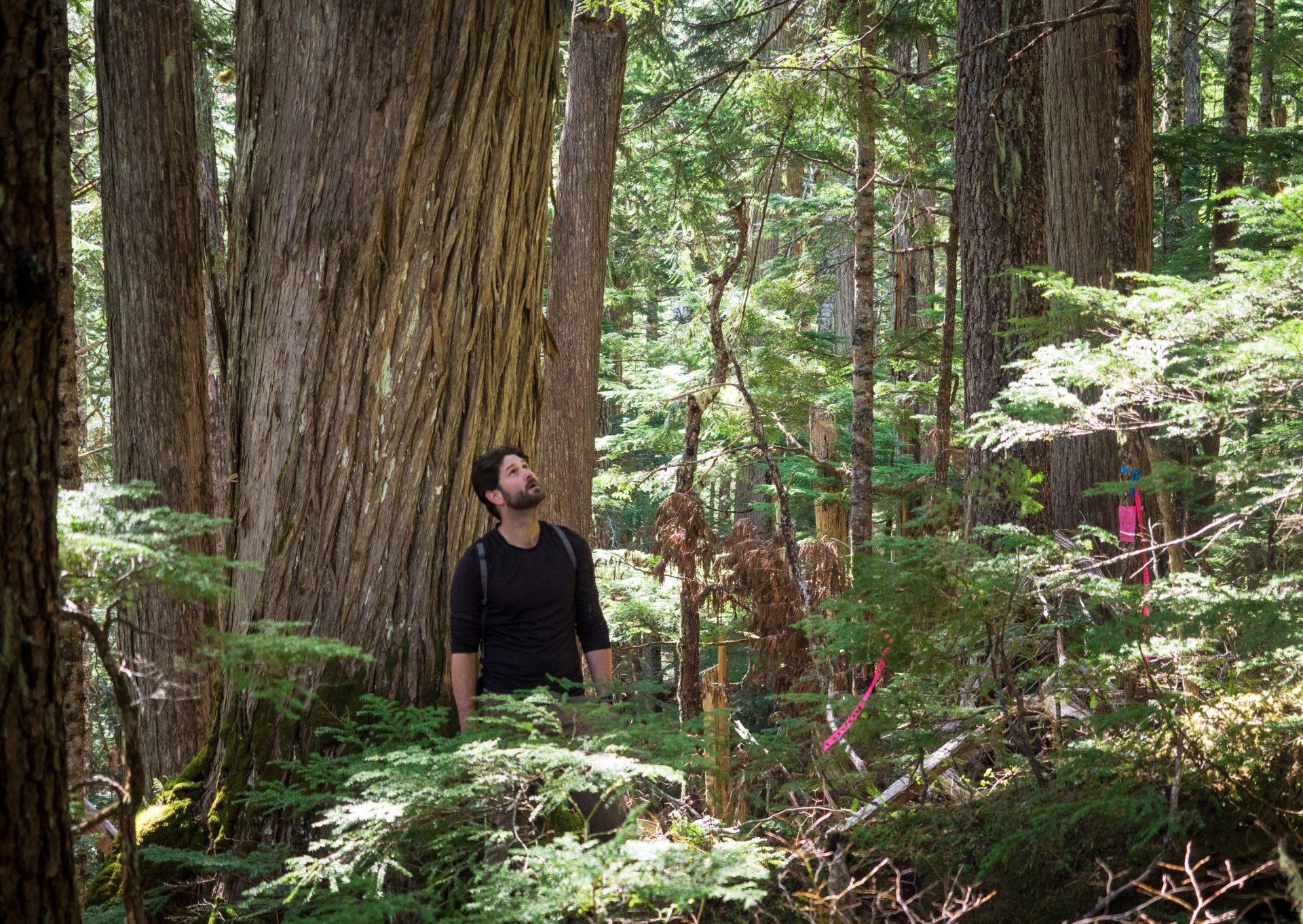 Sierra Club BC campaigner Mark Worthing