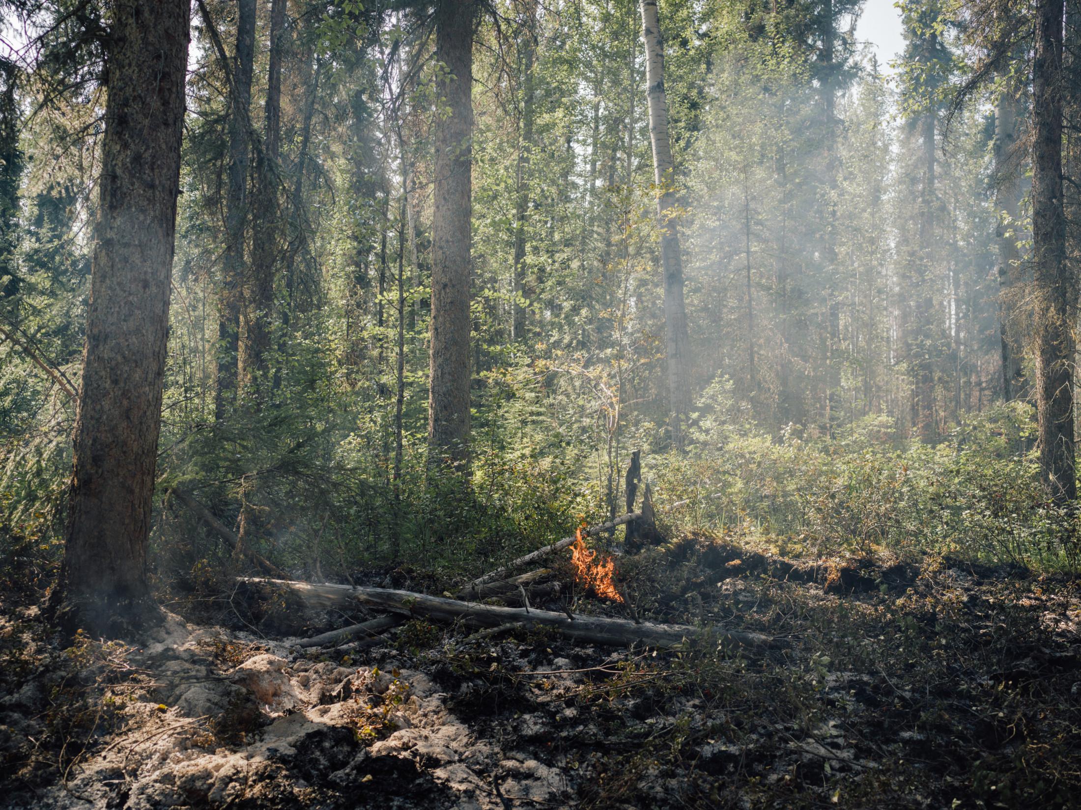 Fire along the Kechika River Kaska Guardians Taylor Roades