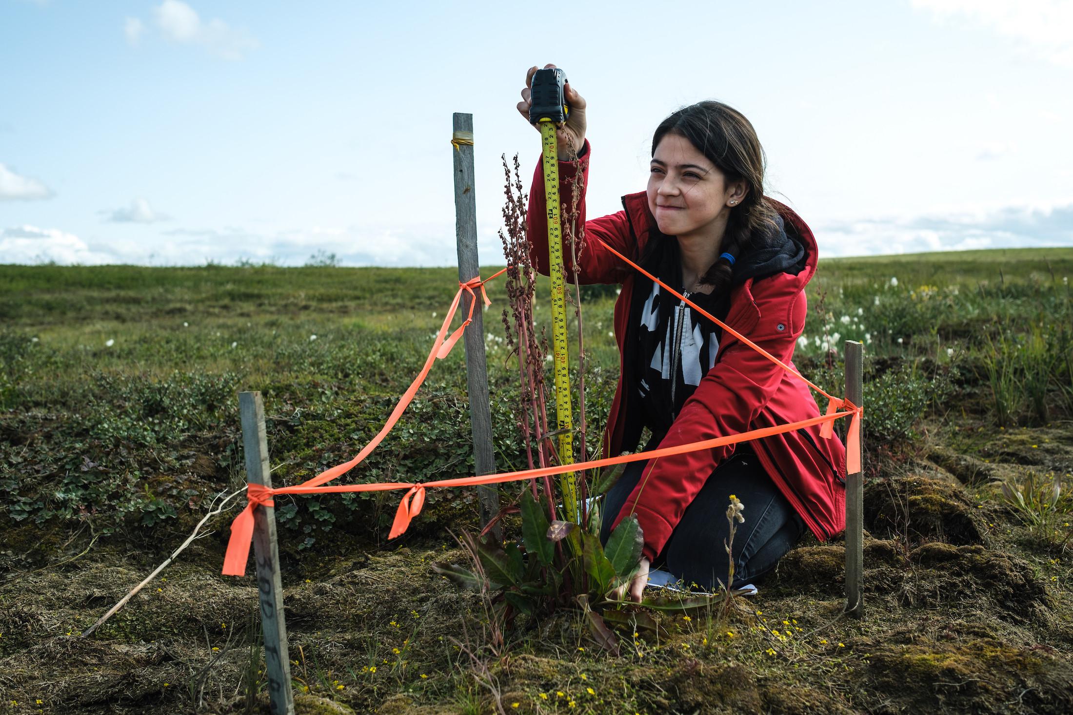 Climate Tuktoyaktuk Eriel Lugt Weronika Murray