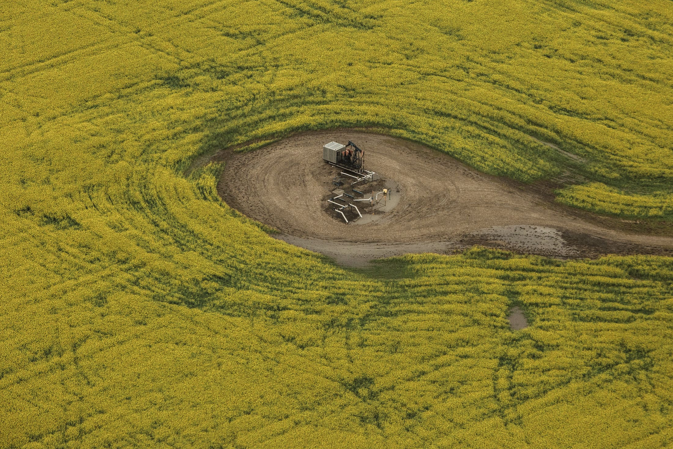 aerial view of yellow field with oil and gas infrastructure