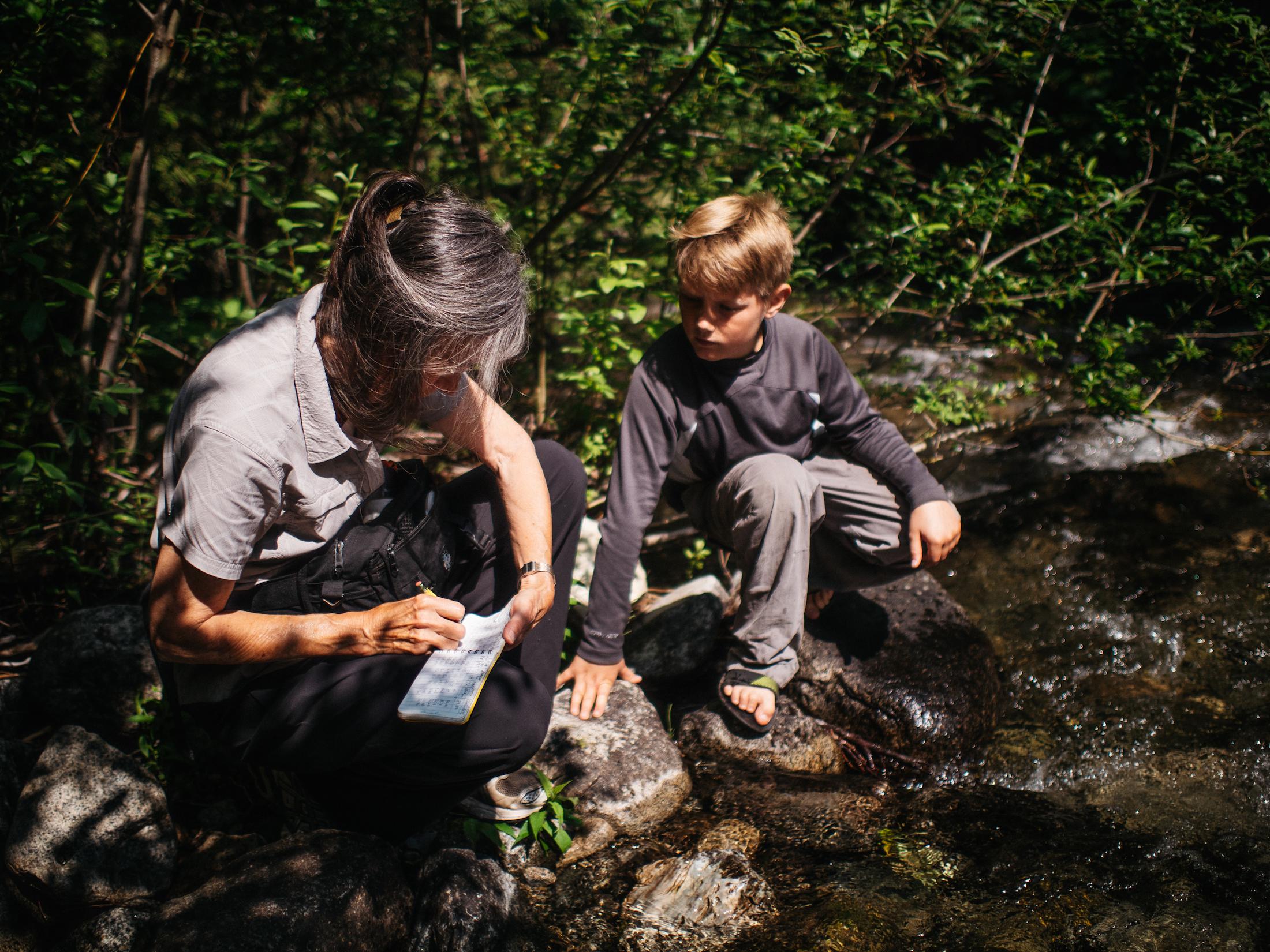 Glade Watershed Kootenay logging Heather McIntyre Louis Bockner