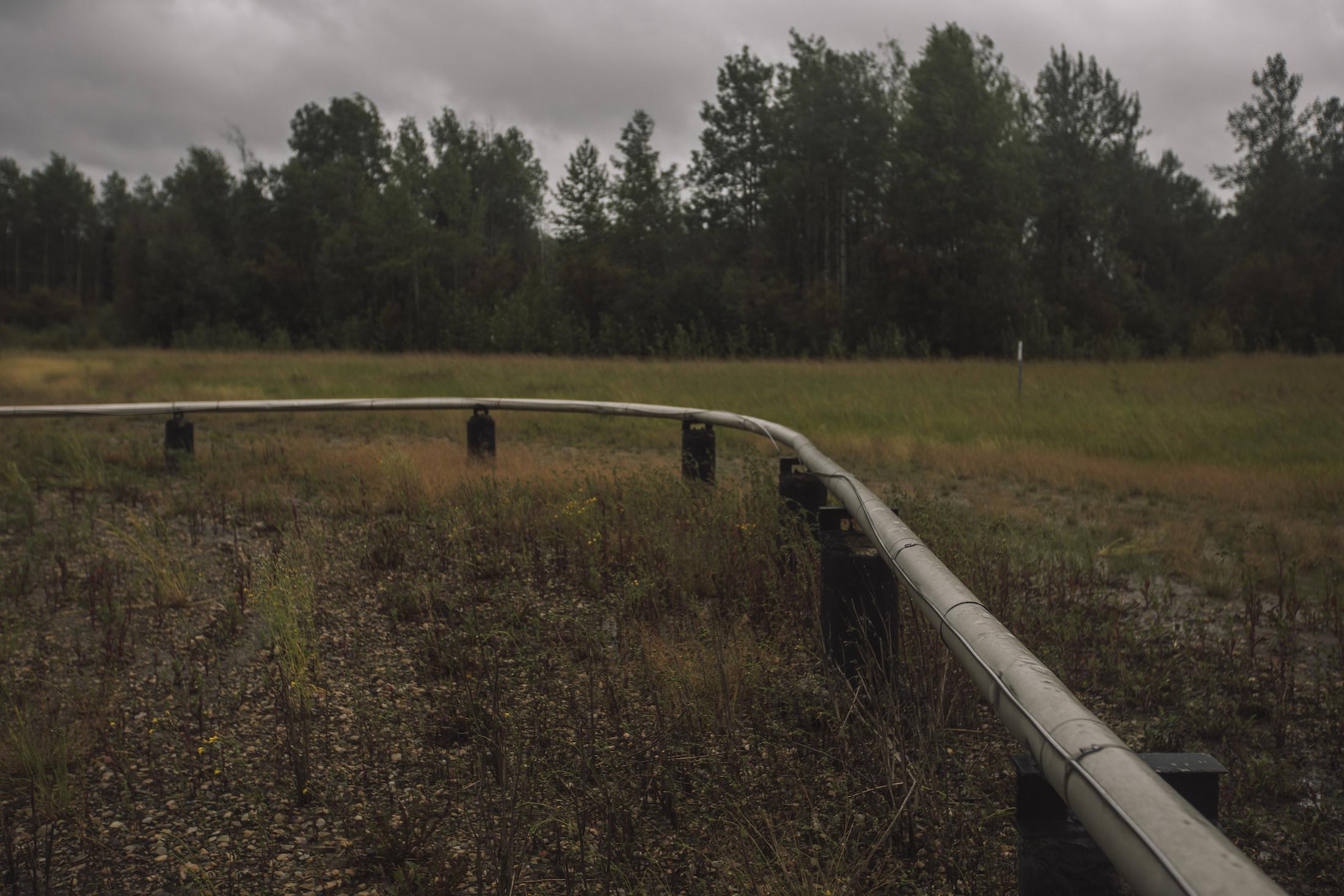 Amber Bracken Valleyview Alberta Fox Creek