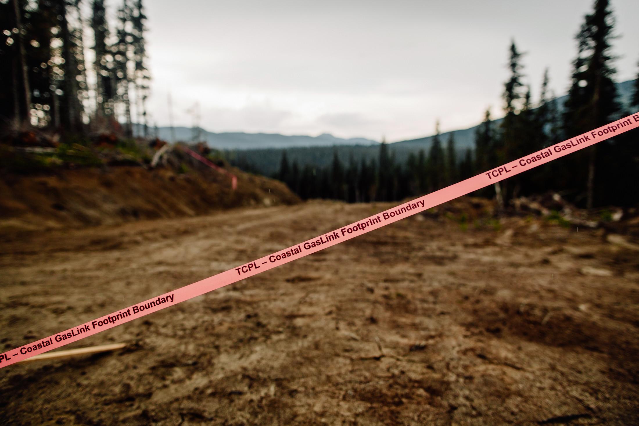 TransCanada's Coastal GasLink pipeline Taylor Roades