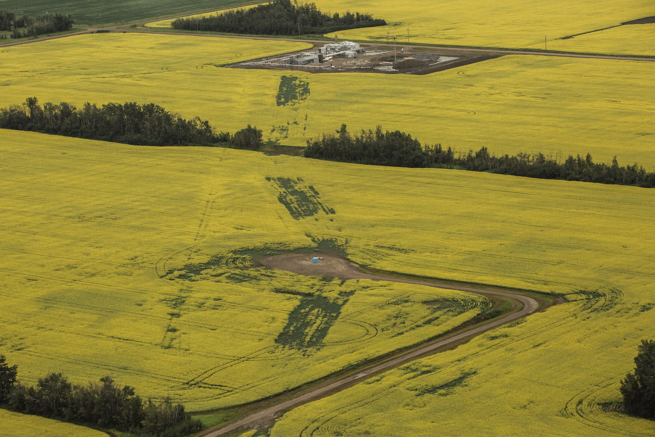 Pipeline affect farmer crops Fairview Alberta