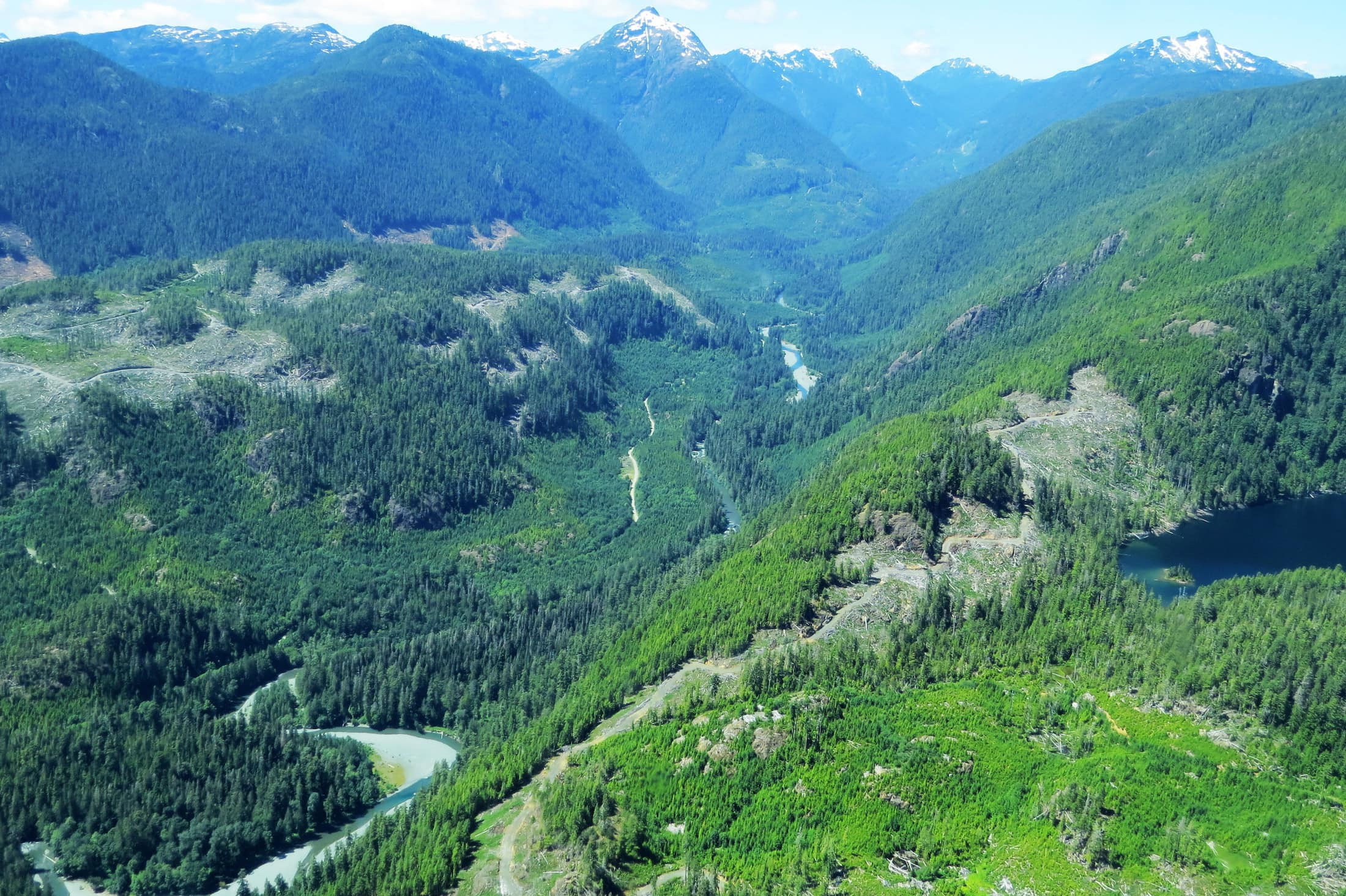Nahmint Valley logging Sierra Club BC
