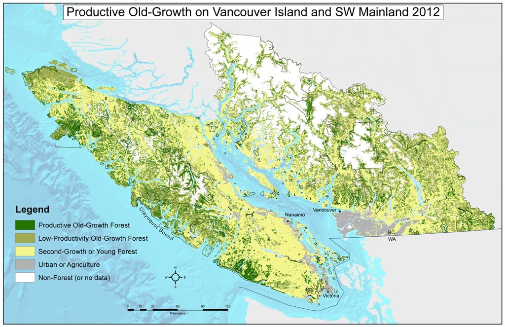Vancouver Island old growth after