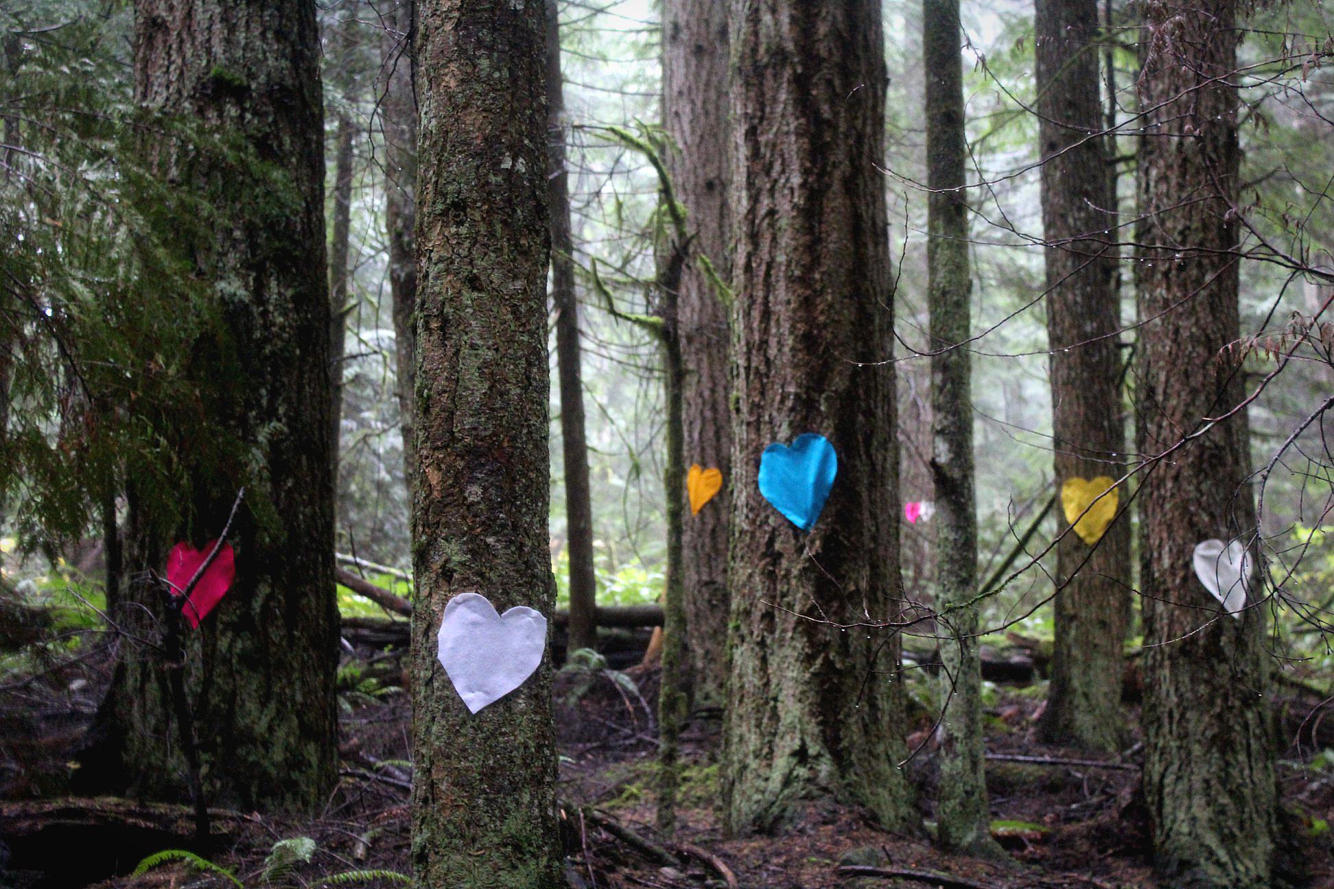 Clack Creek forest felt hearts