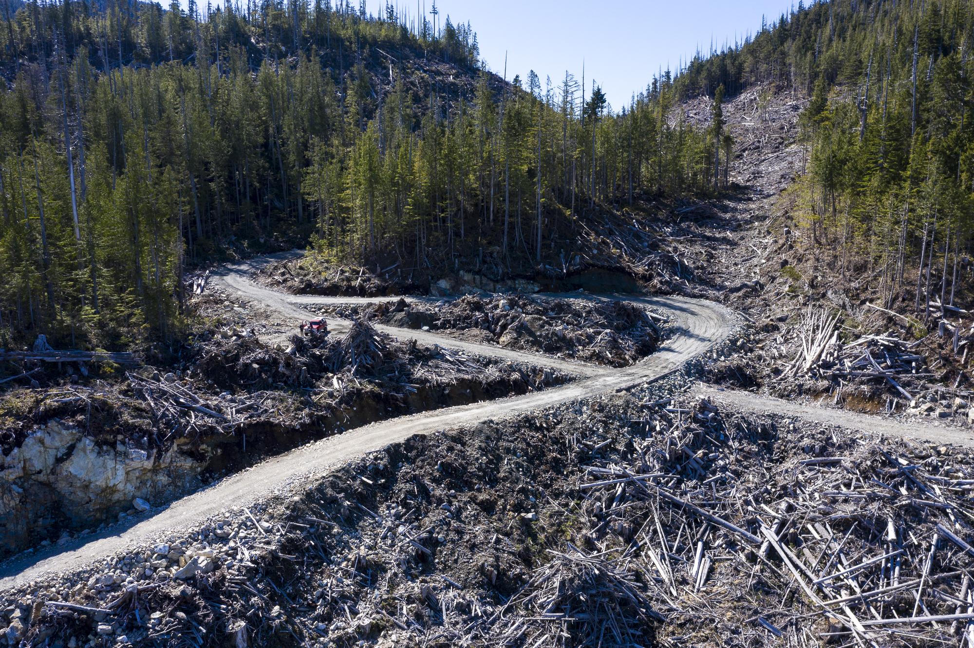 Gilford Island forestry roads