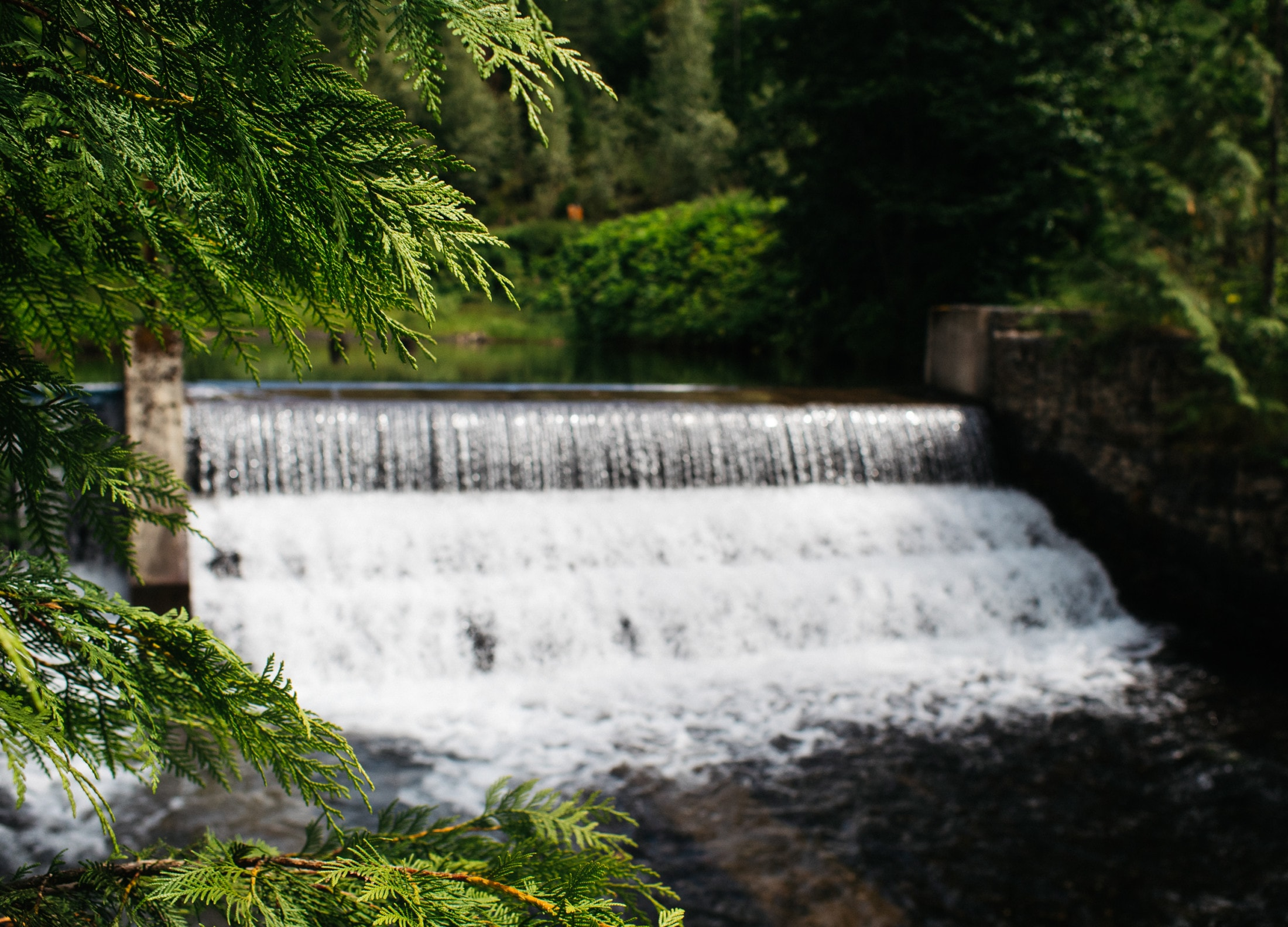 The Homestead Hydro Systems' dam