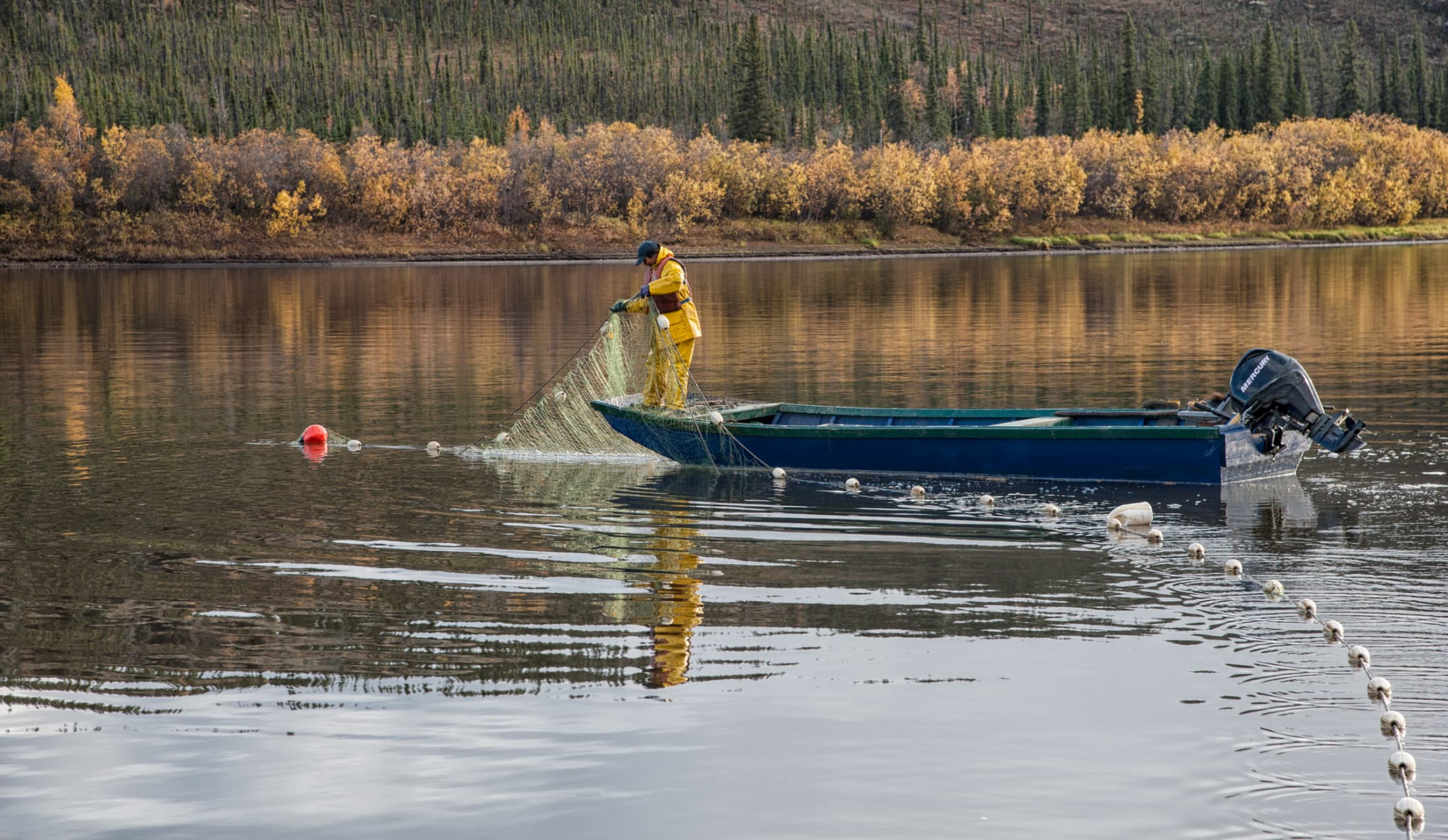 Vicky Josie salmon fishing Porcupine River, Yukon Territory, Canada.