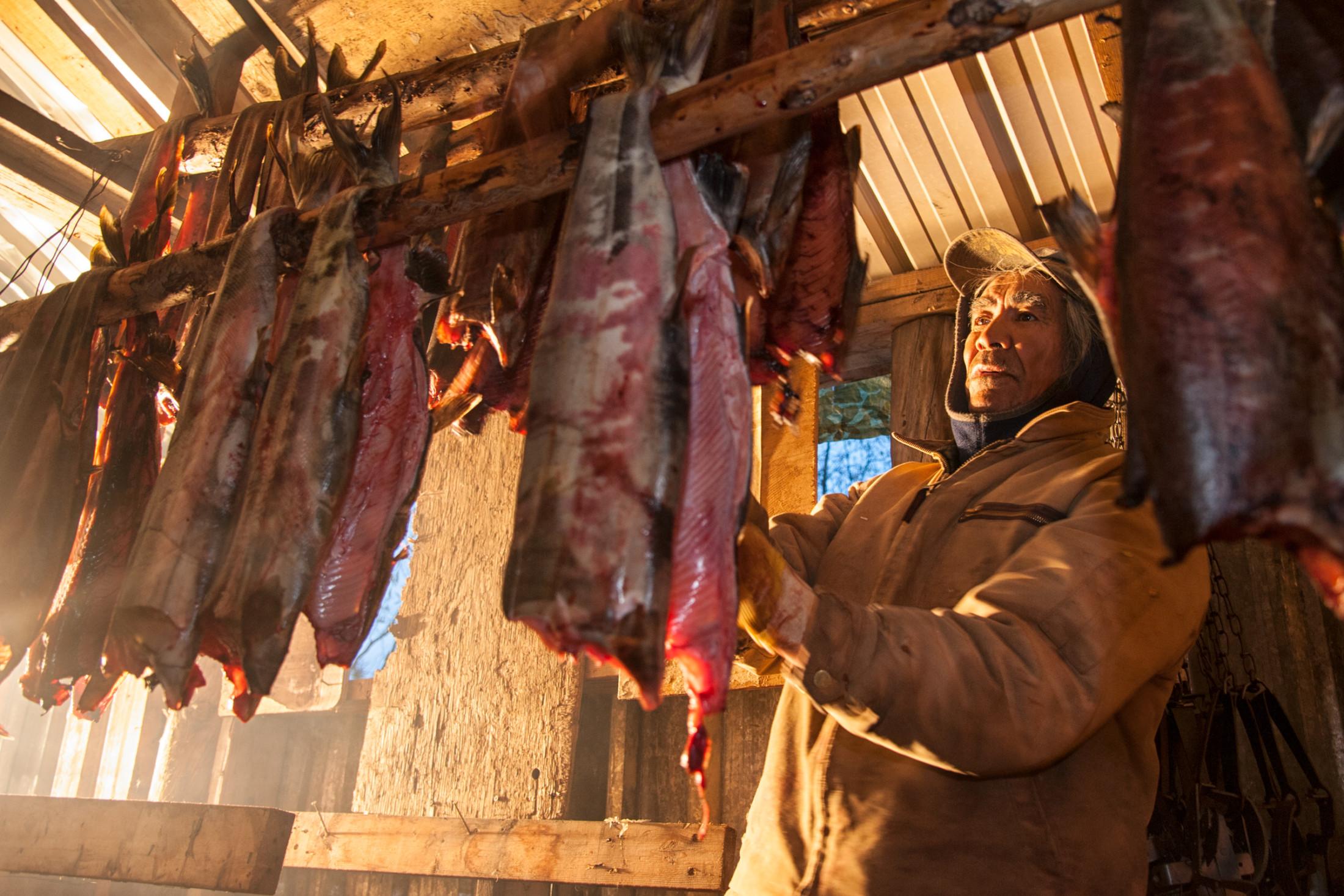 Gwich'in elder James Itsi chum salmon