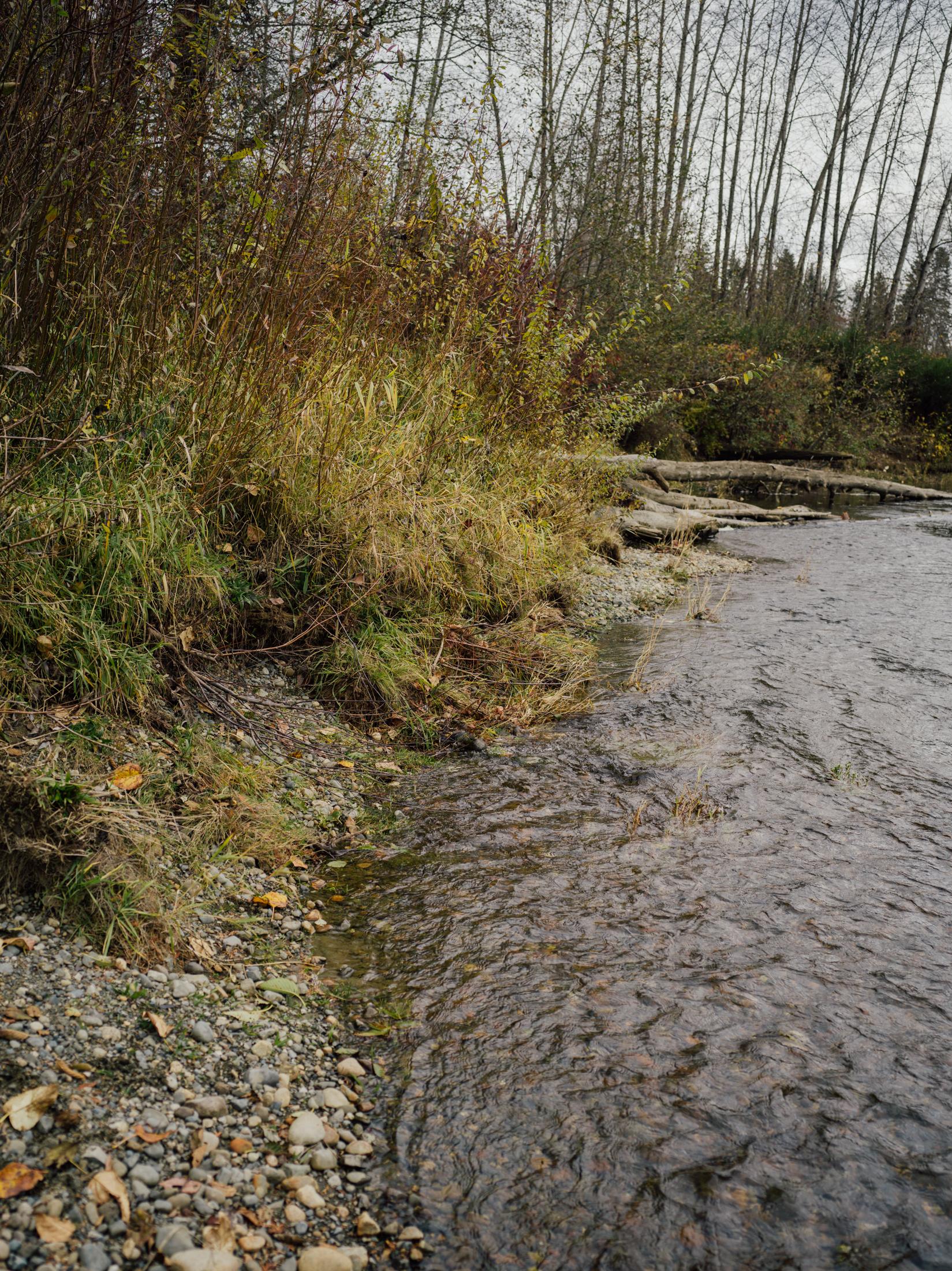 Tsolum River
