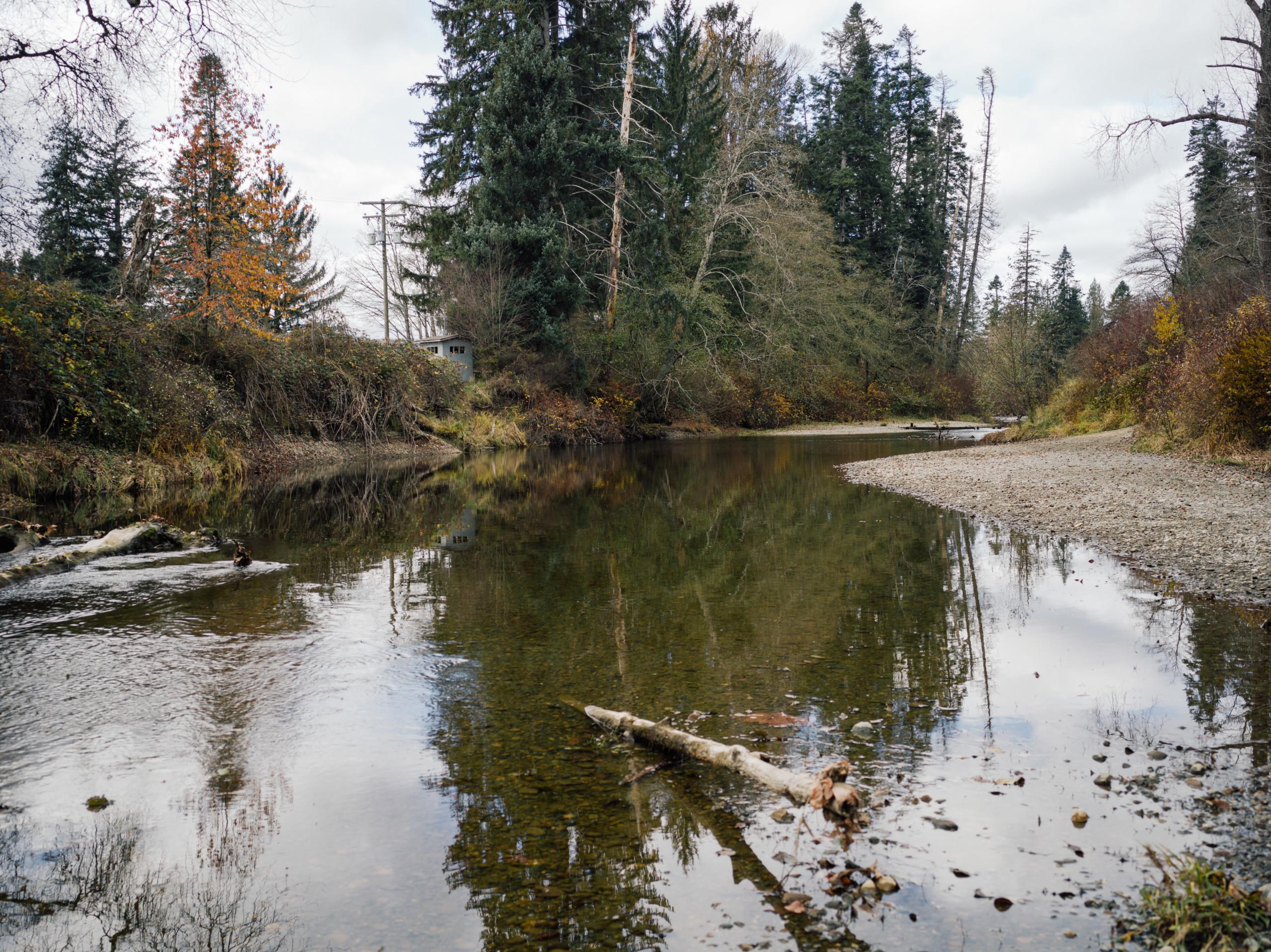 The Tsolum River