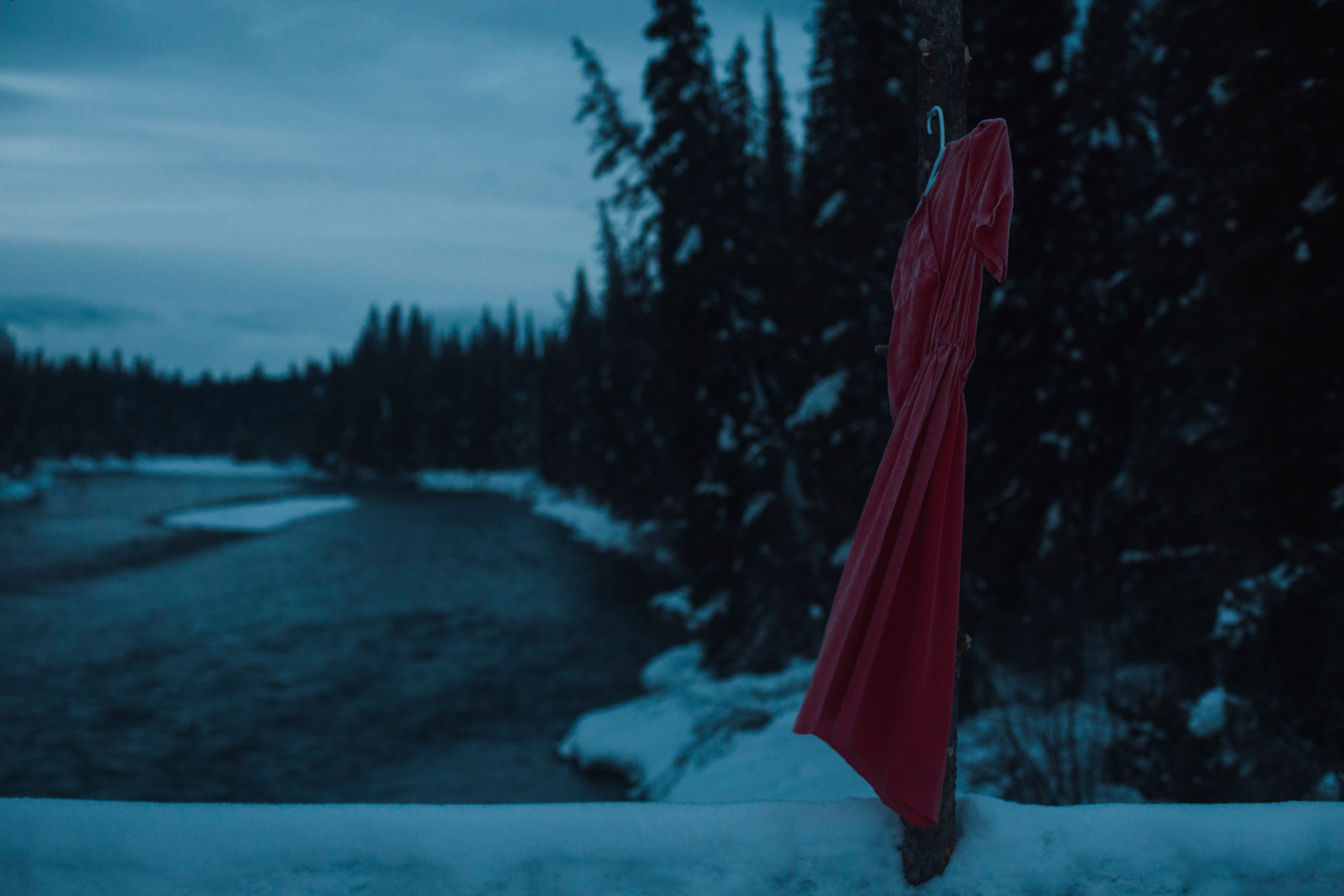 Red dress unist'ot'en MMIWG