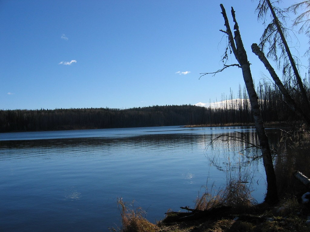 Crow Lake Provincial Park Alberta