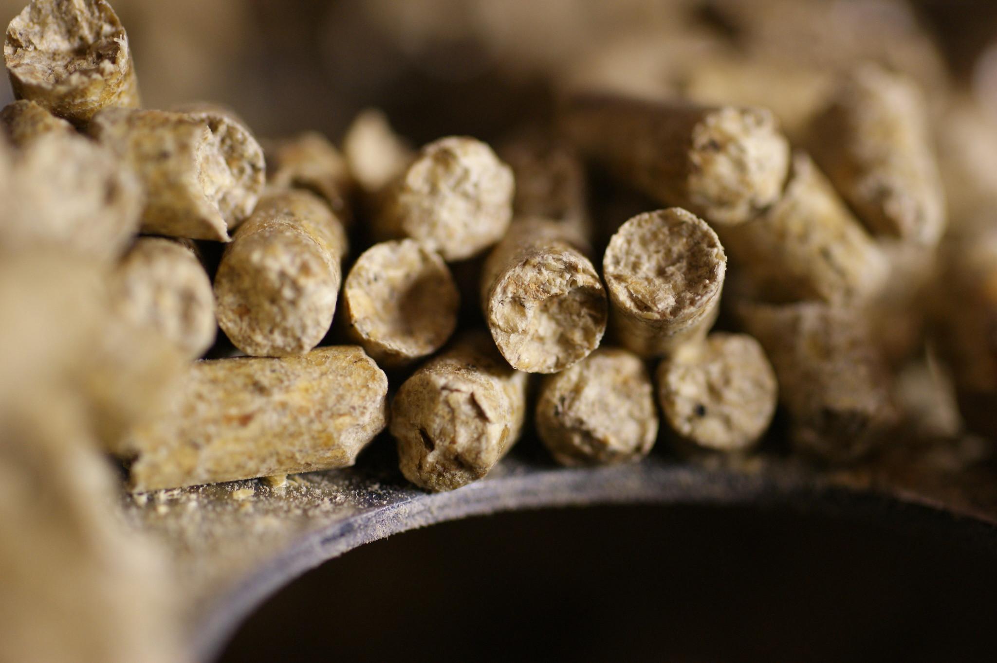 Wood Pellets biomass