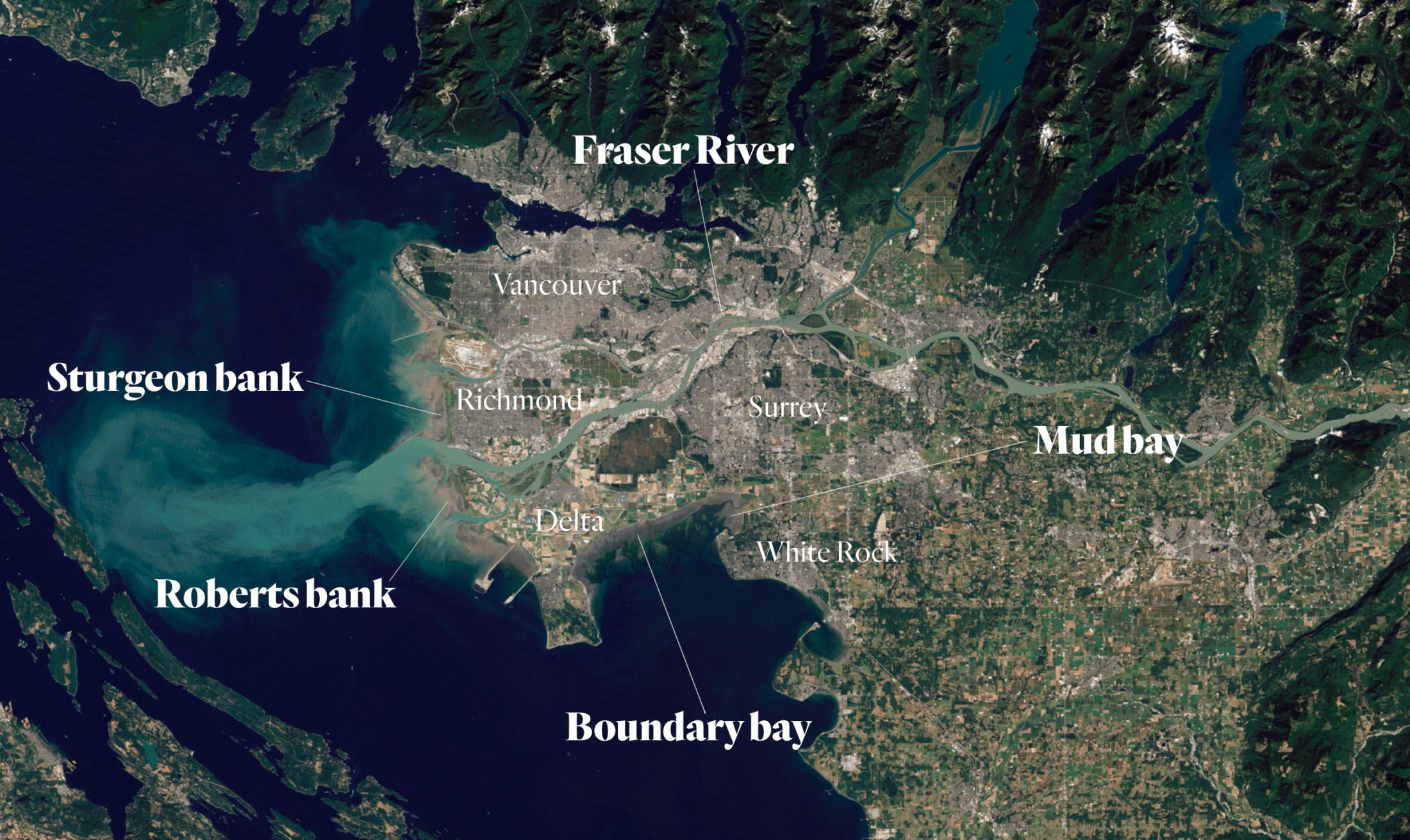 Boundary bay salt marsh climate change Fraser Estuary map