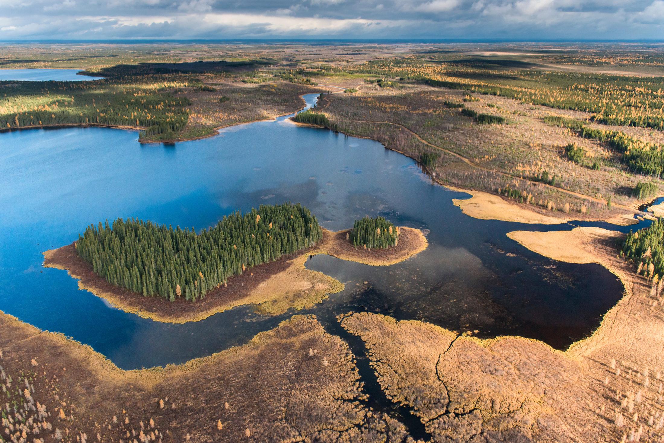James Bay Lowlands