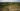 20190618RJ_NRDC_Boreal_Forest_0878 (1)