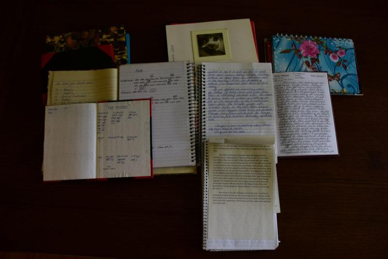 Leilah Kirsh journals