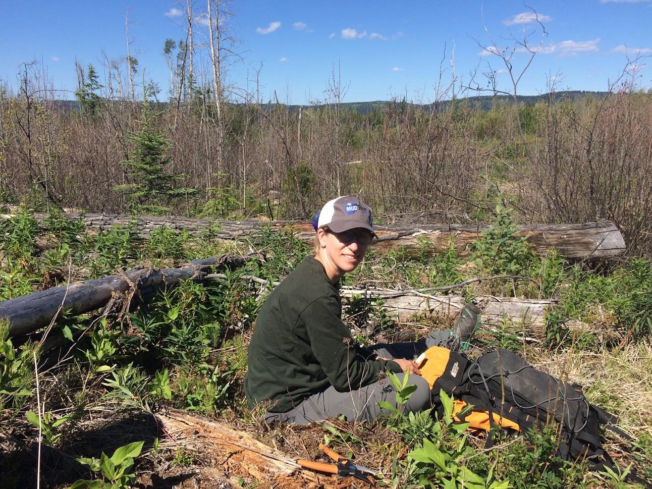 Lisa Wood field work