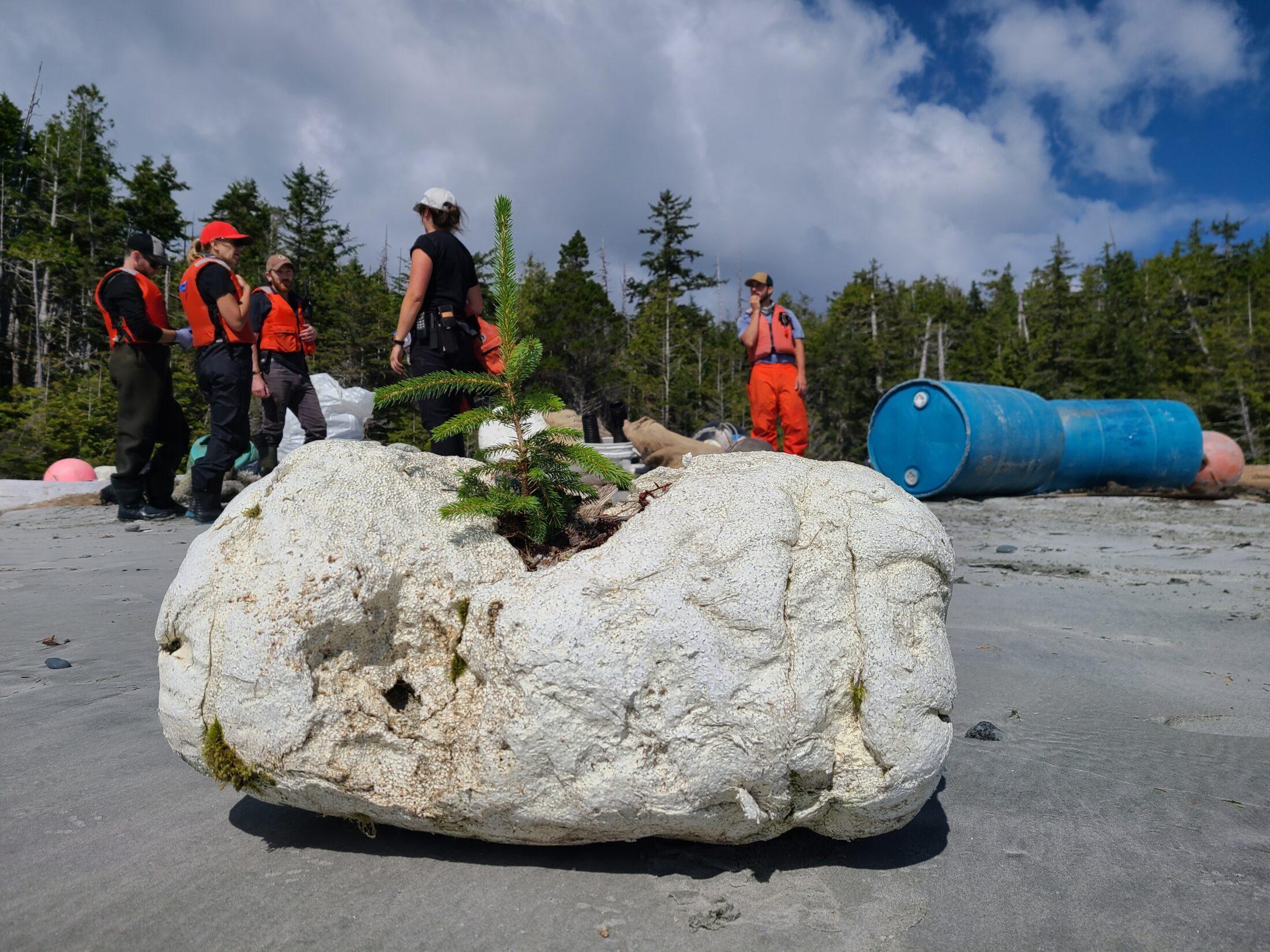 Debris, Clean Coast, Clean Waters Initiative