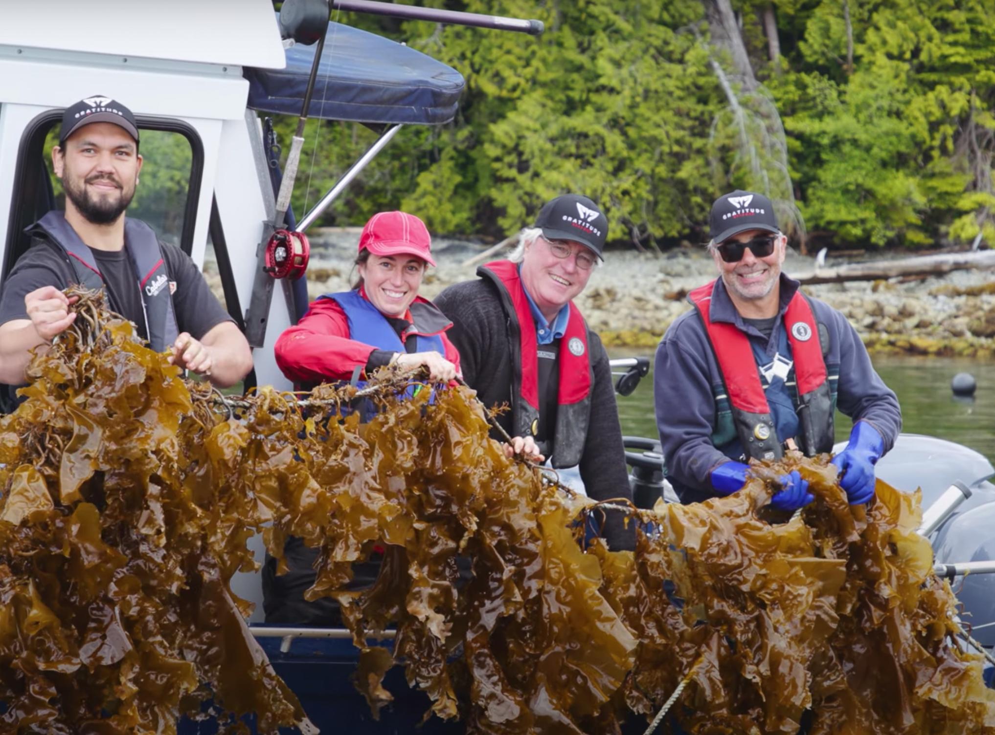 Cascadia Seaweed