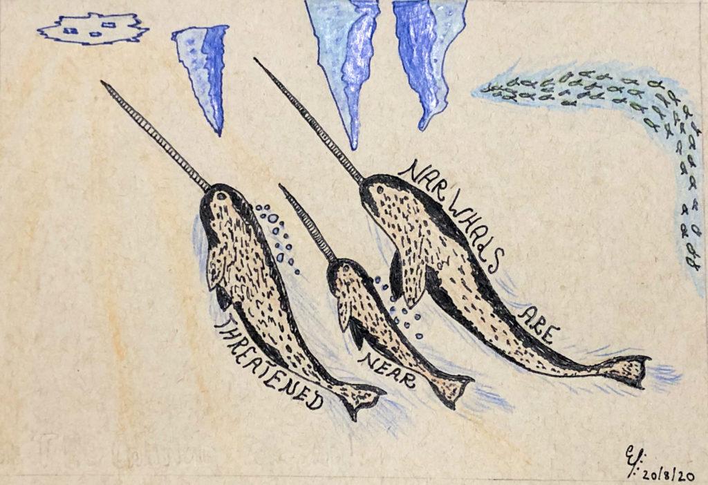 Ethan Ezekiel narwhal drawing
