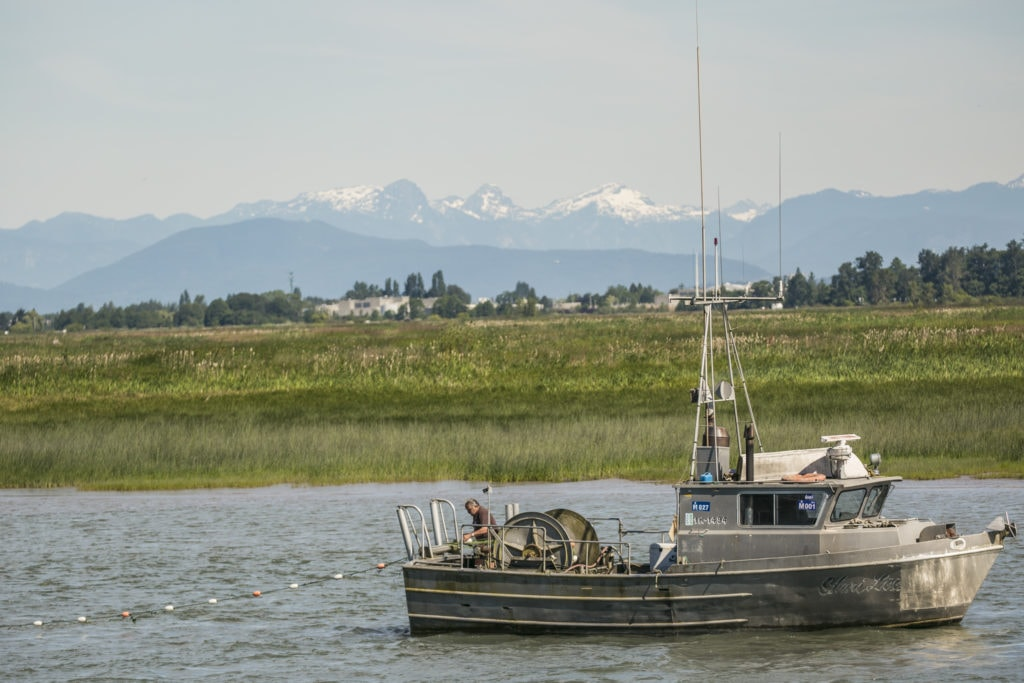 fishing boat fraser delta